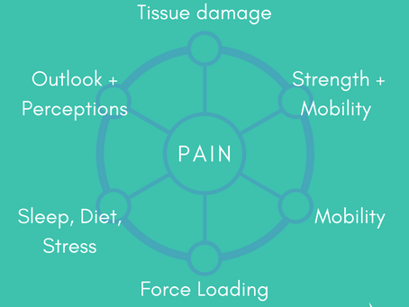 Chronic Pain Requires a Multi-faceted Approach