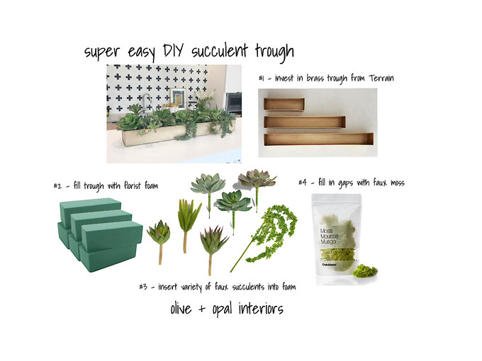 DIY Succulent Trough