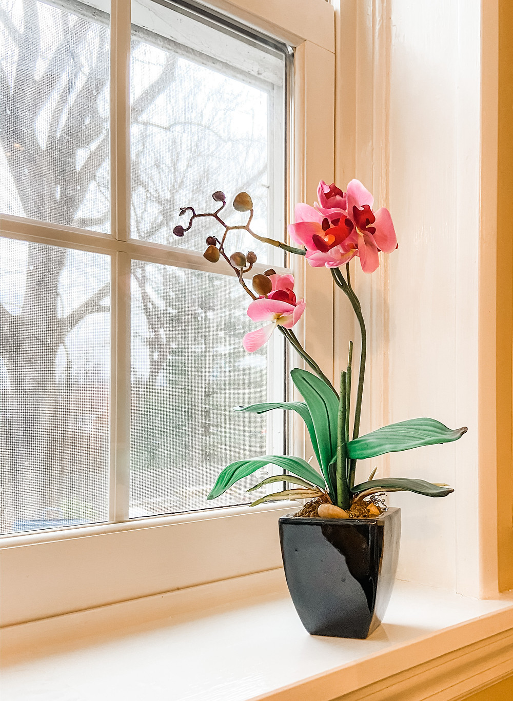 faux orchid on window sill
