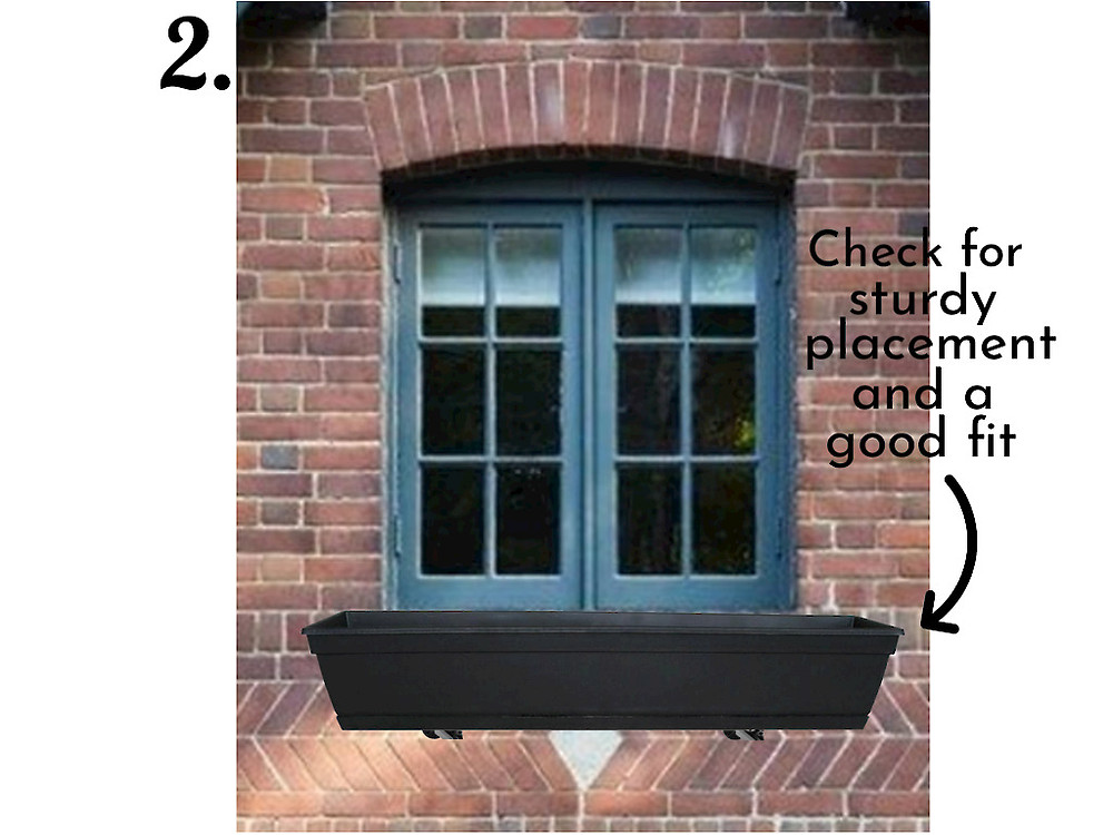 check window box for fit