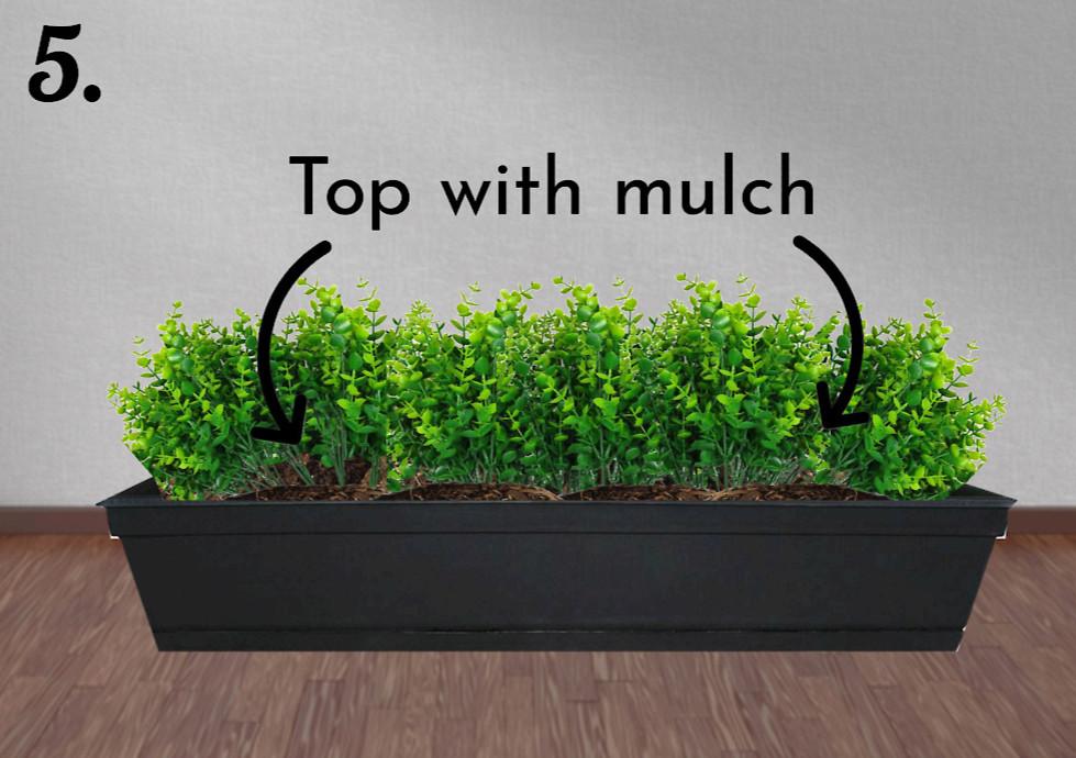 add mulch on top