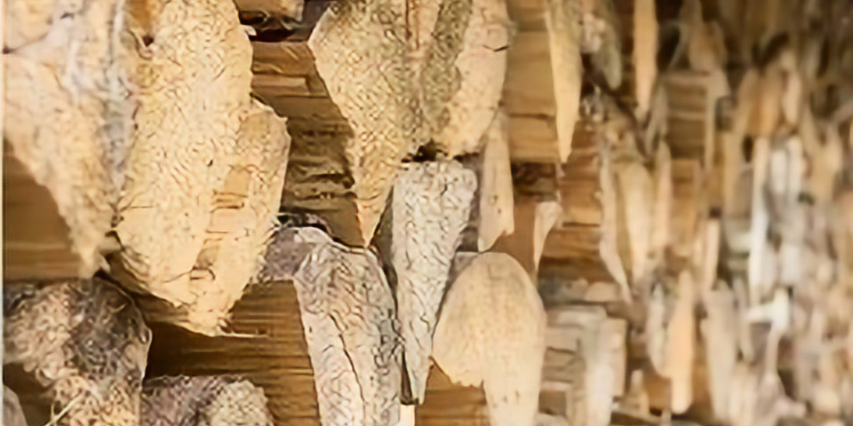 Backyard Wood Products: Drying Your Own Lumber