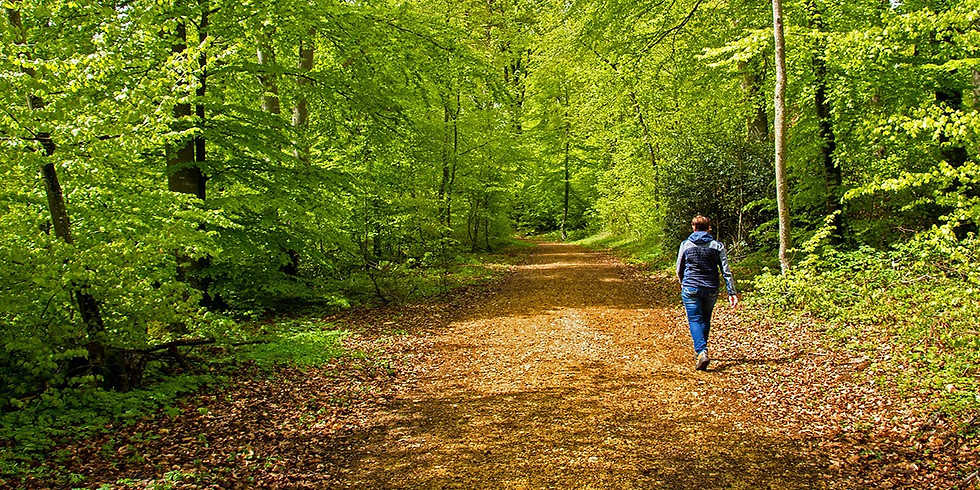 Advice from the Woods: Ask Our Experts (1)