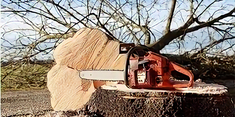 Basic Chainsaw Safety