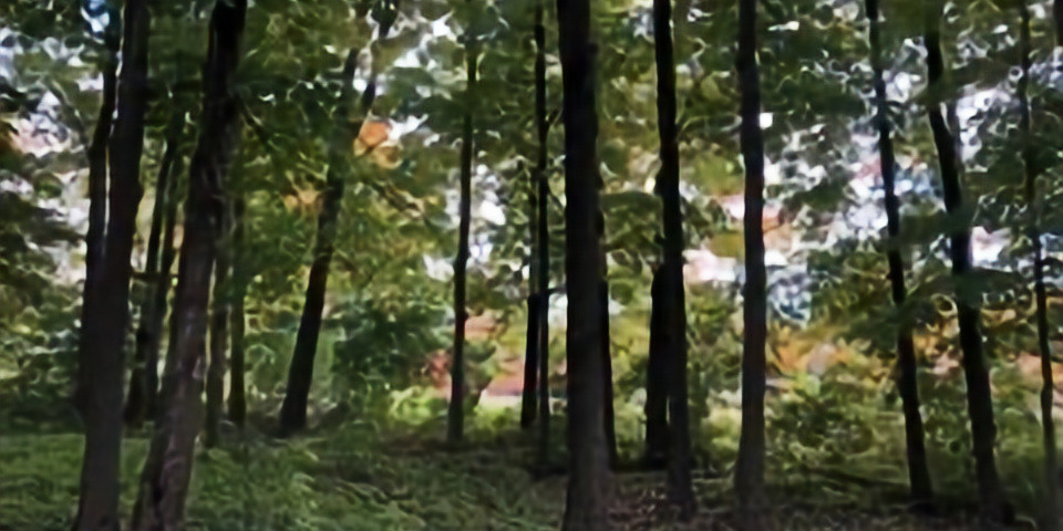 Forest Legacy Planning: Moving Toward the Decision Point
