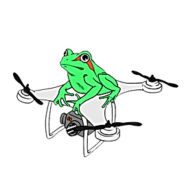 white outline Frog Drone Logo Design png