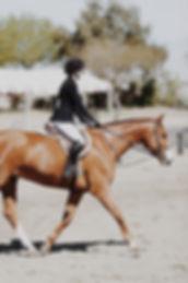 photo-of-woman-riding-horse-902999.jpg