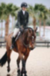 woman-rides-brown-horse-943245.jpg