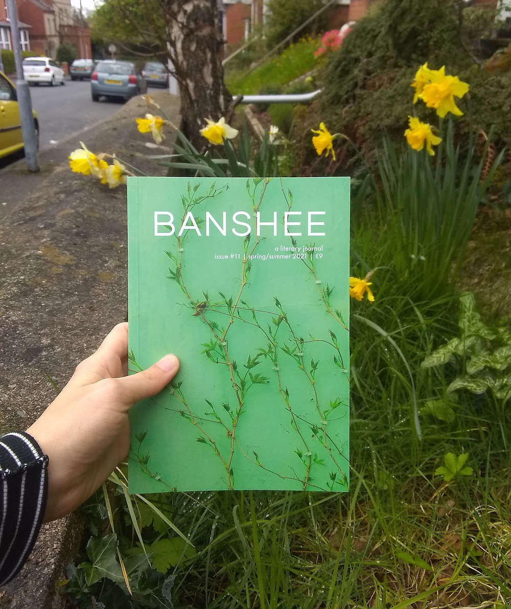 A green literary journal with flowers on it held up against actual flowers in a front garden