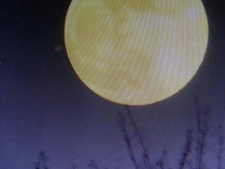 Moonstruck?