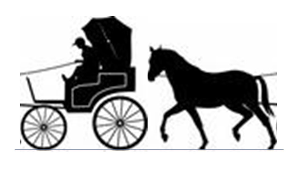 ISO puts cart before the horse!