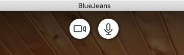 BlueJean webcam.png
