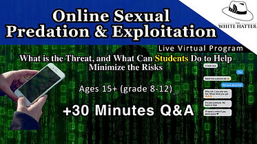 Online Sexual Predation and Exploitation