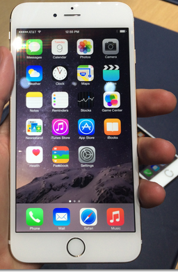 Apple IPhone 6 Plus SKU# CP04