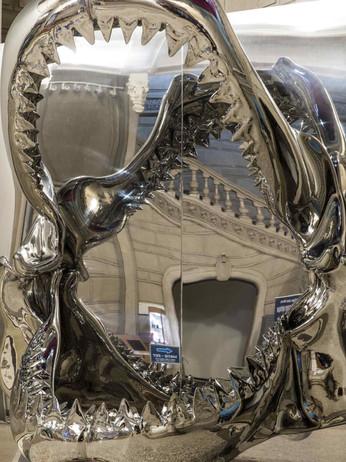 leffet-miroir-exposition-borderline-c-ma