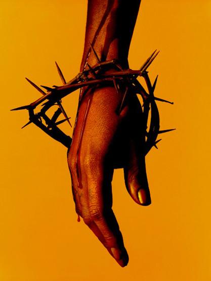 Albert Watson - Hand with thorn