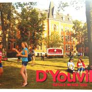 D'Youville Mini Poster