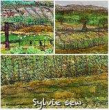 Sylvie Lockdown view.JPG