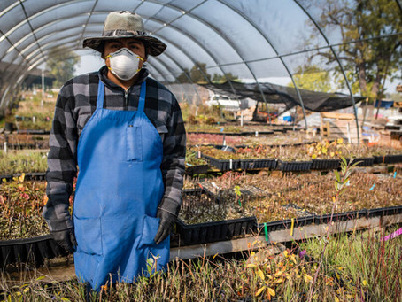 California Wildfires and Food Security