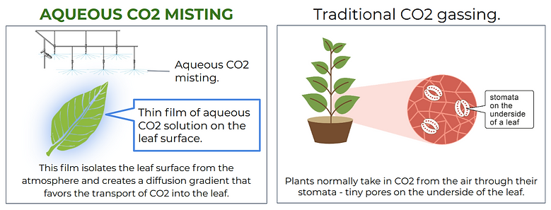aqueous vs gassing.png