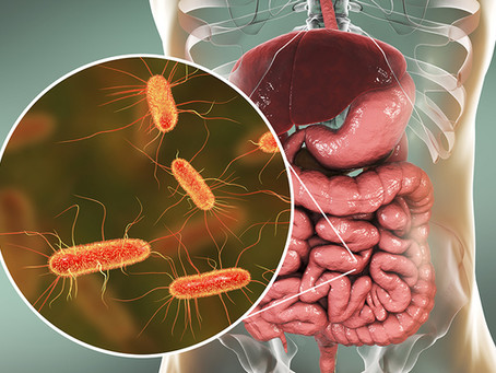 Another E. coli Outbreak – A New Solution to Help