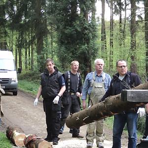 Maifest 2012 - Der Maibaum
