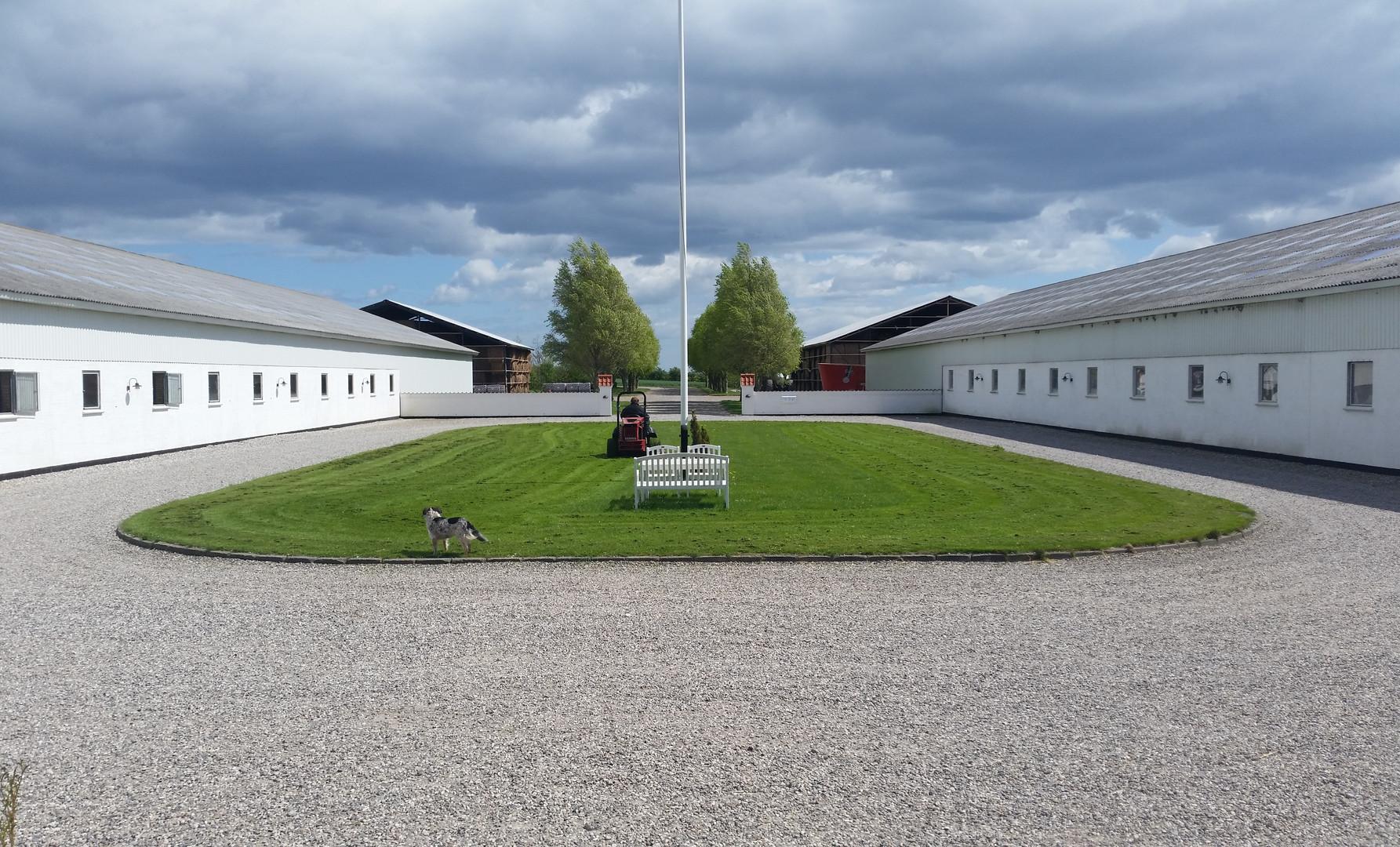 Gårdspladsen på Birkedommergården