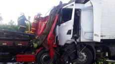 Dois caminhões batem de frente