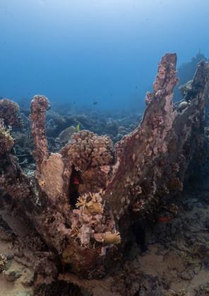 Barge of Gubal