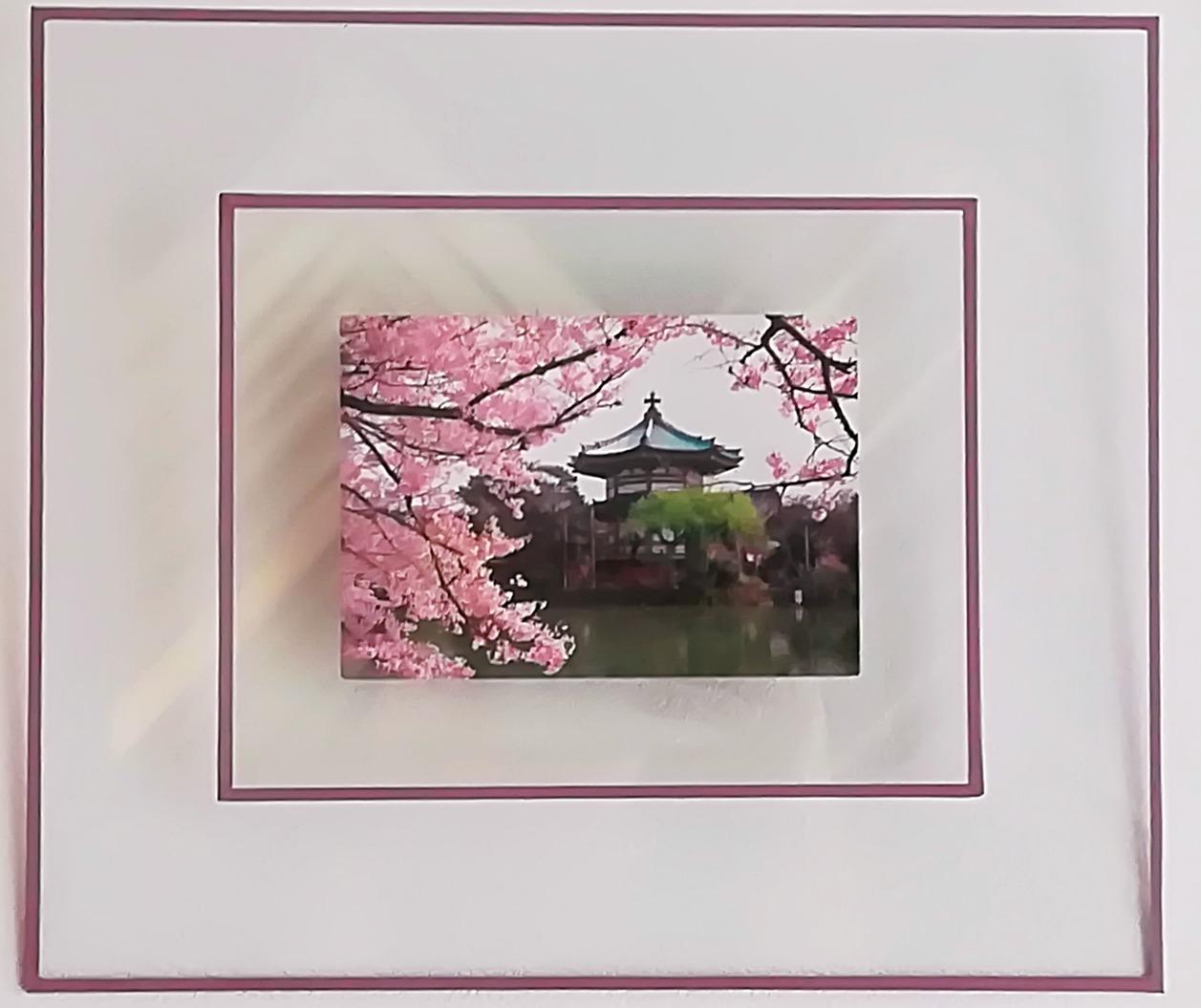 Carte postal Japon