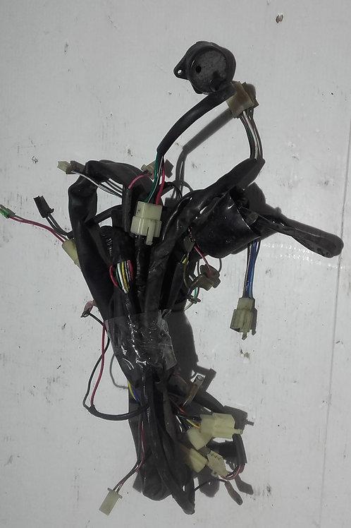 Faisceaux électriques CPI Oliver City