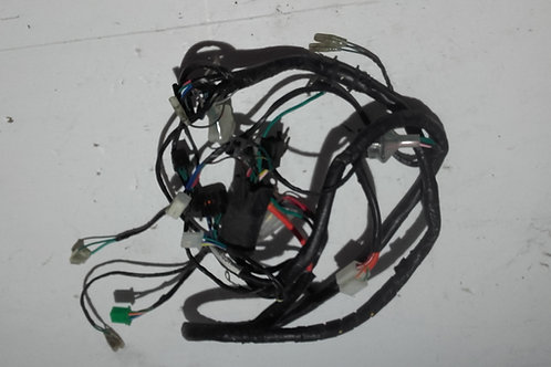 Faisceaux électriques 2 Temps Kymco Renouvo;RS