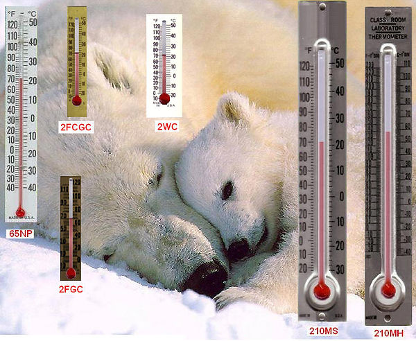 thermometers-with-backing2.jpg
