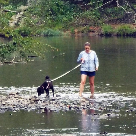walking dog in river