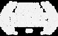 transparent%2520DMOFF_edited_edited.png