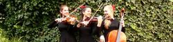 Musikschule Schüler Violine Viola