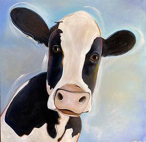 cow molly.jpg
