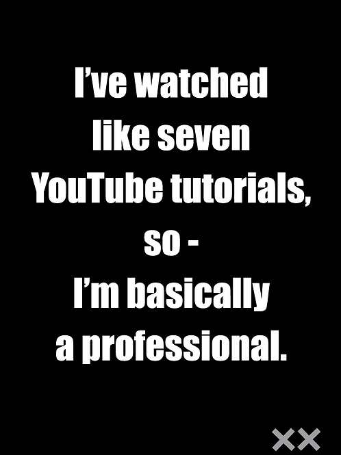 I've Watched Like Seven YouTube Tutorials So Basically I'm a Professional