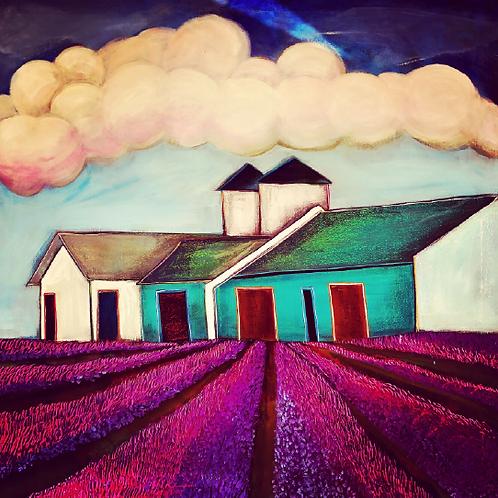 "Print of ""Lavender Fields Forever"""