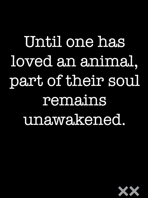Until One Has Loved an Animal, Part of Their Soul Remains Unawakened.