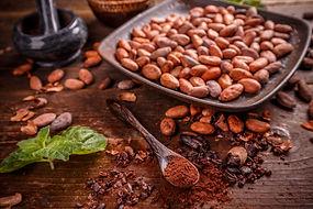 organic-cacao-beans-R.jpg