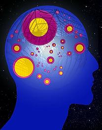 brain-194932_1920(1).jpg