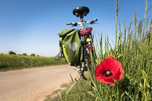cycling-5178398_1280 (1) fahrrad.jpg