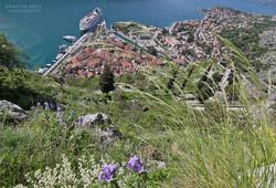 Hiking above Kotor