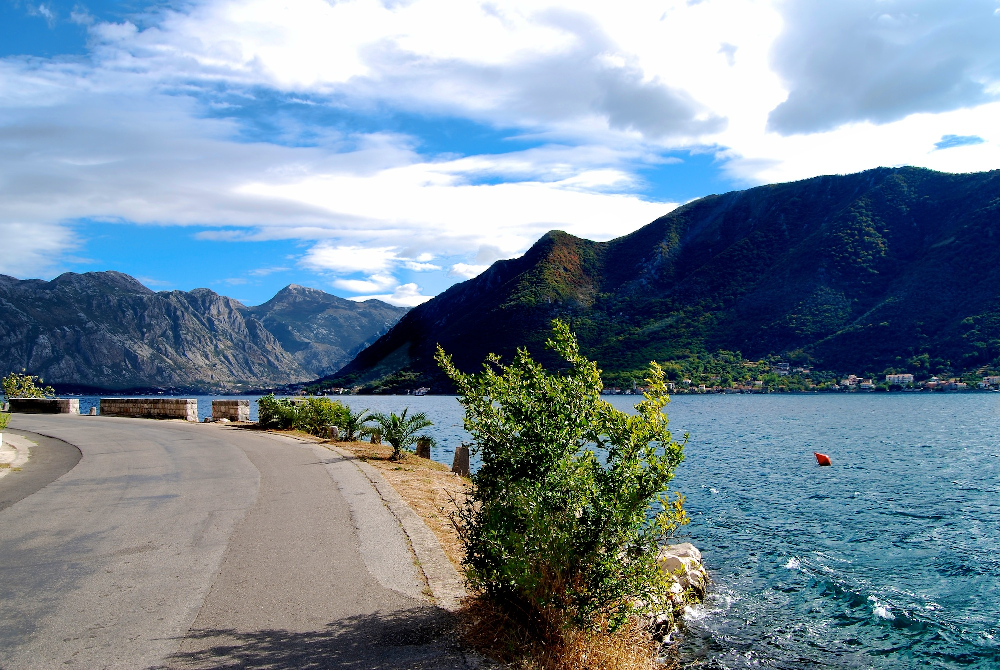 Scenic coastal road along Kotor Bay