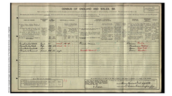 Cattell Family 1911 Census