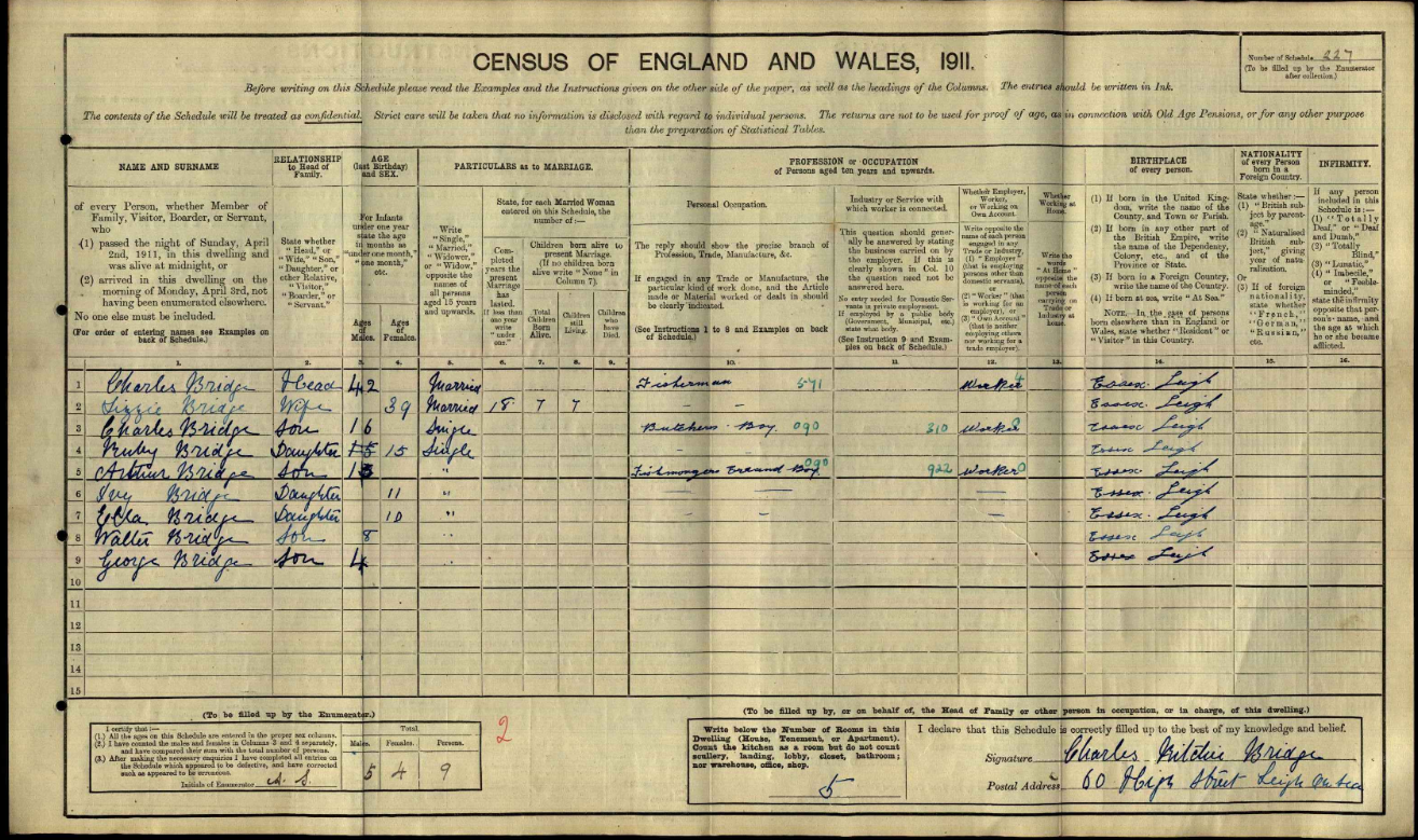 Bridge 1911 Census_edited