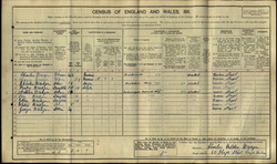 Bridge 1911 Census_edited