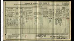 Culliford 1911 Census