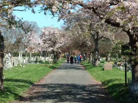 Friends of Southend Cemeteries